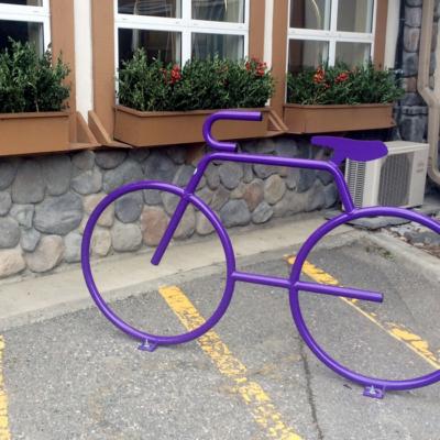 Coast Canmore custom Dero bike rack