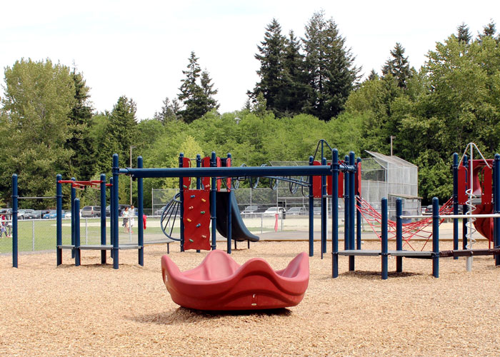 Cougar Canyon playground with OmniSpin