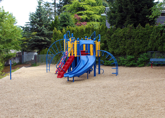 Cougar Canyon play space