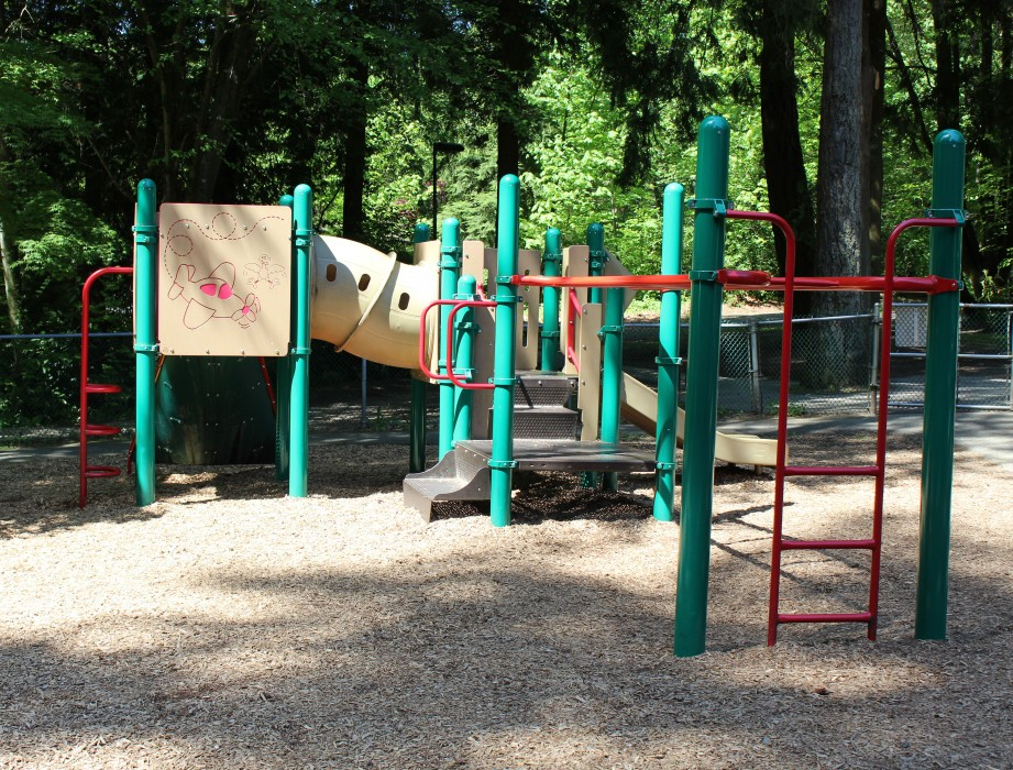 Ron Andrews Play Structure