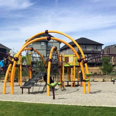 Hillcrest Evos Play Structure