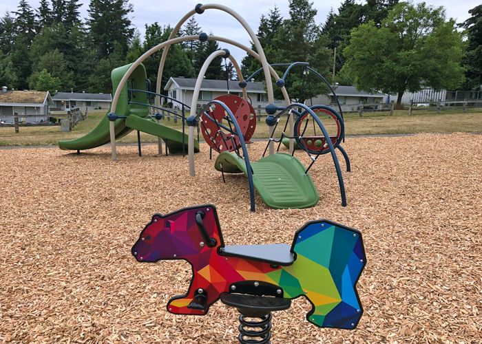 Harbour Wood playground with DigiFuse Rider