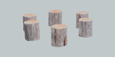 circle of stumps for outdoor learning